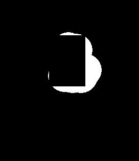 Electric Locks Icon1