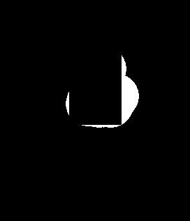 Electric Locks Icon2